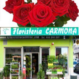 FLORISTERIA CARMONA