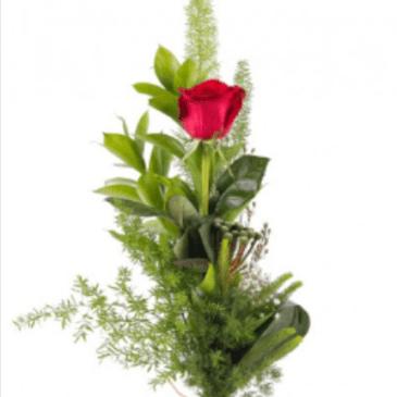 Ramo 1 Rosa Rf 021 San Valentín
